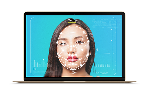 Facial Recognition Laptop View | Tethyseid